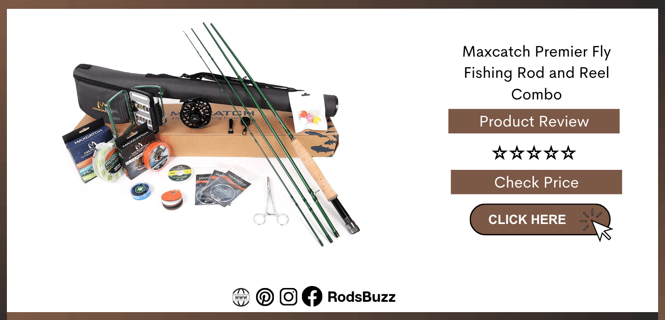 Best Fishing Rods and reels for Beginners