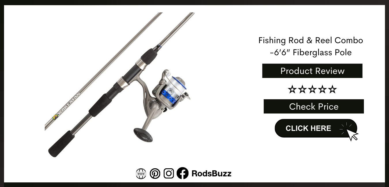 Best Spinning Rod and reel for Bass Fishing