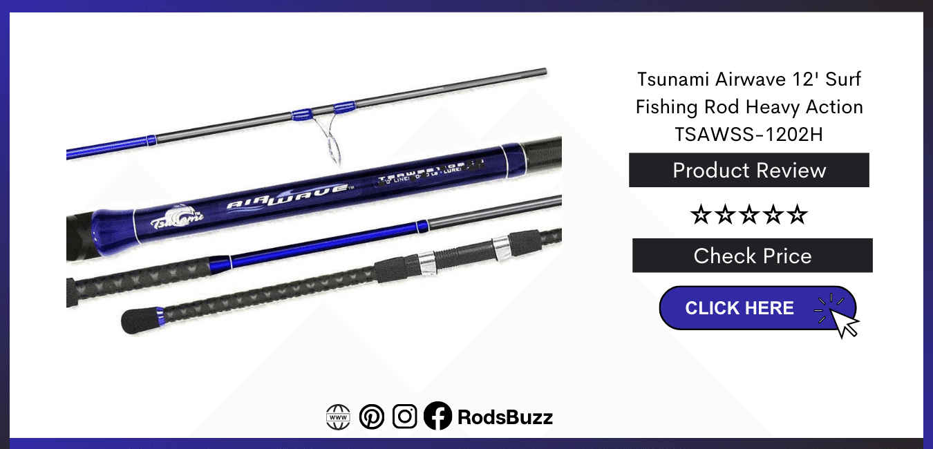Best Surf Fishing Rod and reel