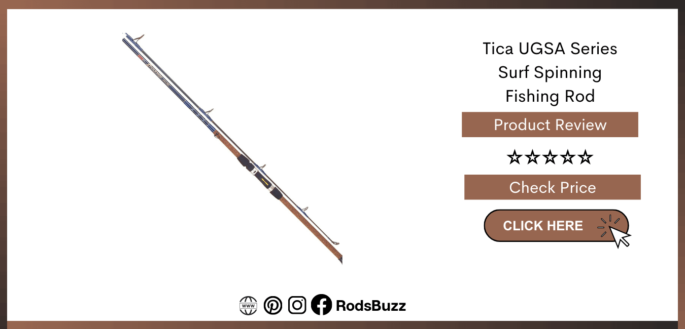 Best rated Surf Fishing Rods