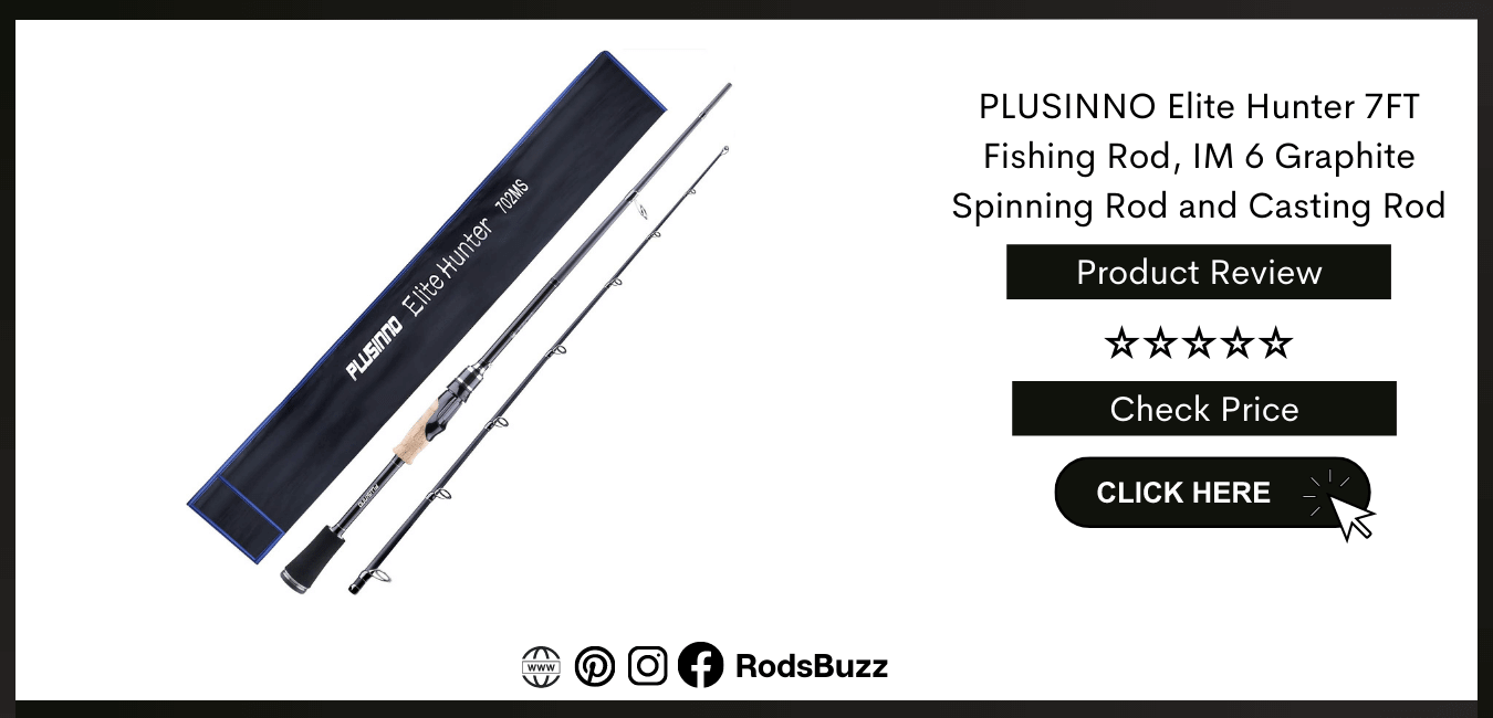 best overall saltwater spinning rods