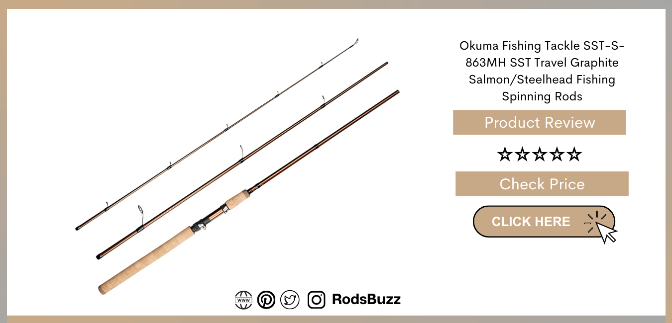 best salmon spinning rods to buy in 2021