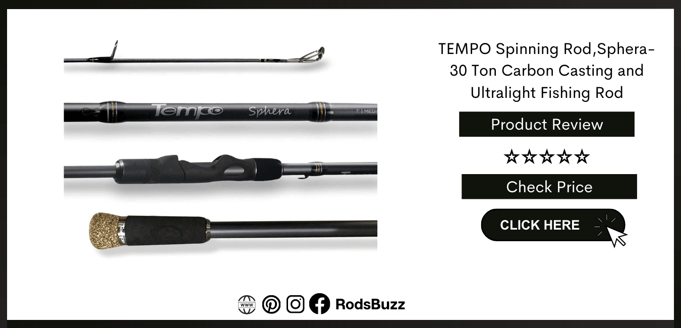 best spinning rods for trout below 200
