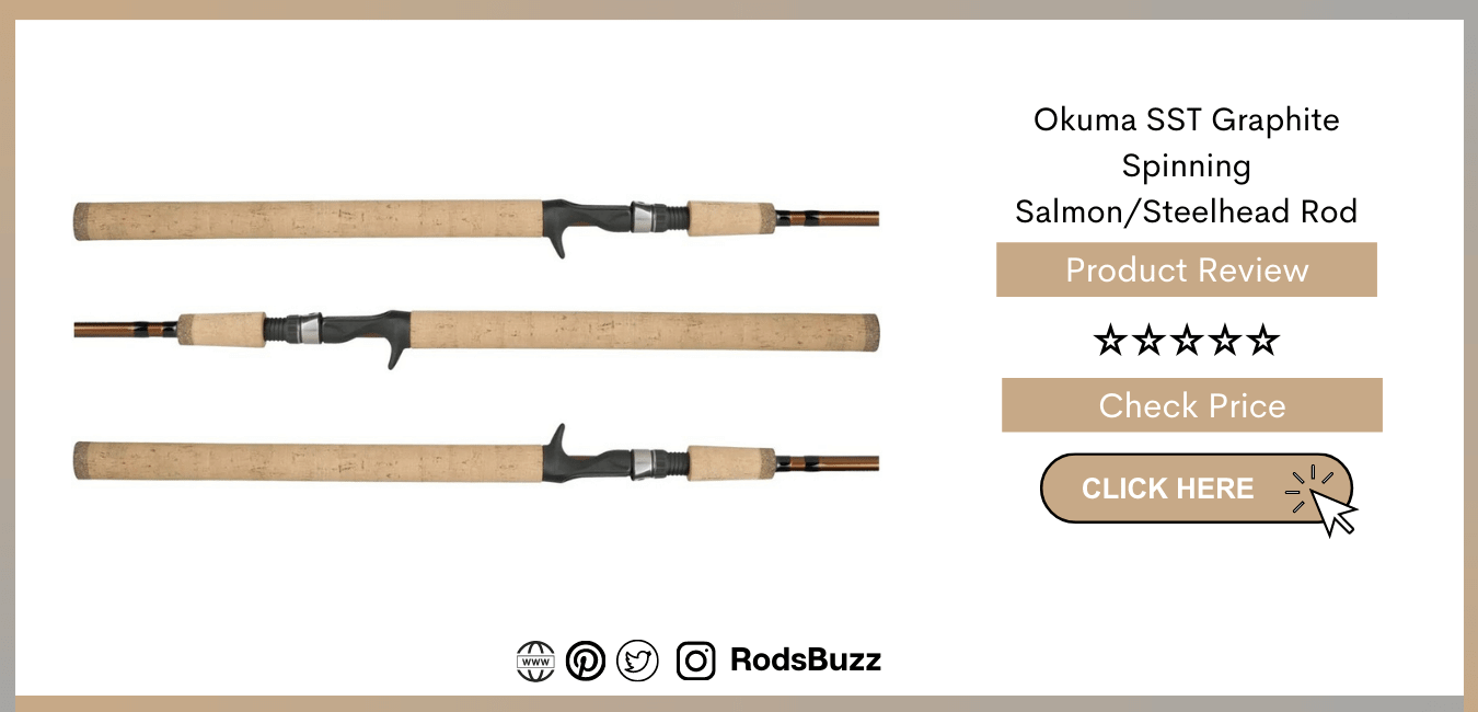 great value salmon spinning rods