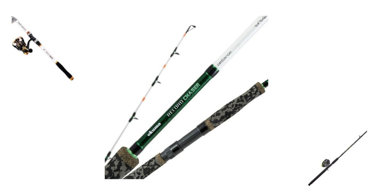 Top 10 Best Rods for Catfishing