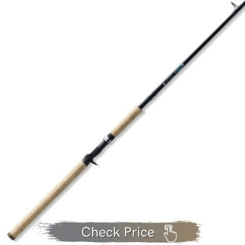 best musky rod for the money